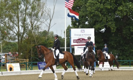 Perfect dressage partners arrive at the perfect time