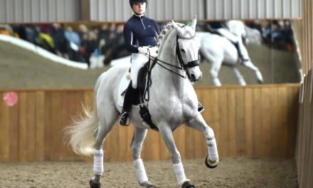 "Paul Hayler, ""All Dressage is about balance"", part 3"