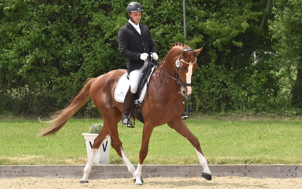 Dressage results: Hickstead International Nations Cup CDIO3* and British YH Championships, 25-29 July, Day 5