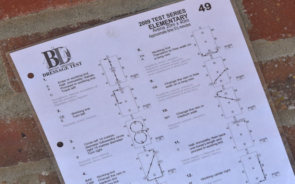 Dressage test Elementary 49 — All about obedience and balance