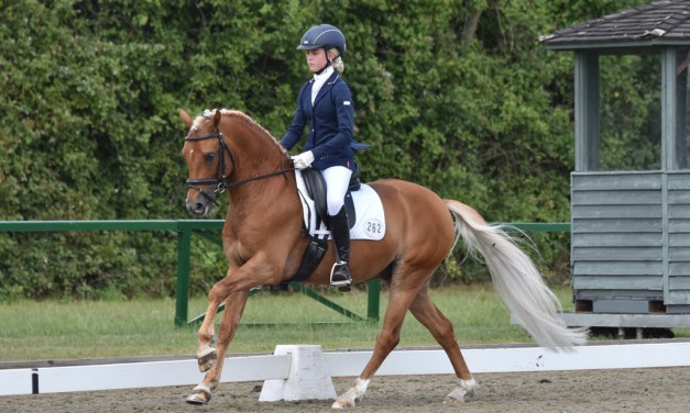 Welcome back to Out and About Dressage!