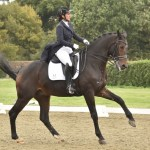 Photos available from recent Hickstead show