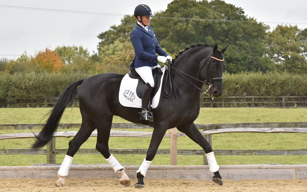 Dressage results: Step Aside (Belmoredean), West Sussex, 11 October
