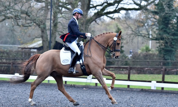 Dressage results: Oldencraig, Surrey, 23 November