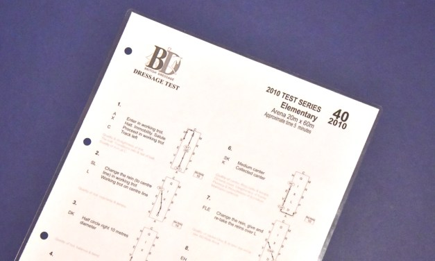 Elementary 40 (2010): about balance and transitions within the pace