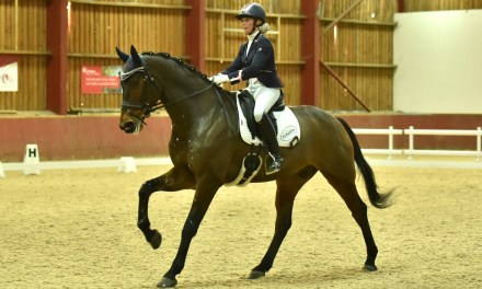 Dressage results: Merrist Wood, Surrey, 17 November
