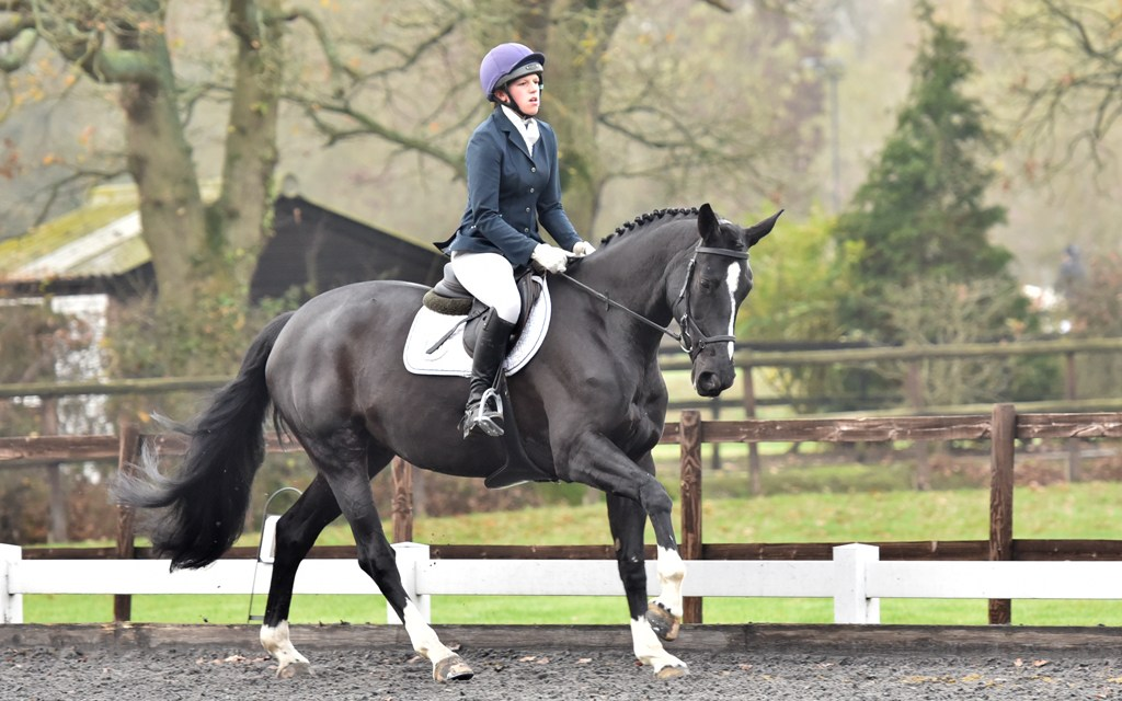 Dressage results: Oldencraig, Surrey, 7 December