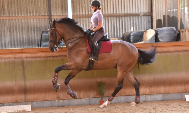 Targeted Pilates 1: Jayne works on canter on and off her horse