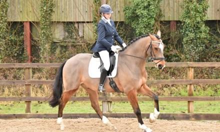 Dressage results: Blue Barn, Kent, 12 December