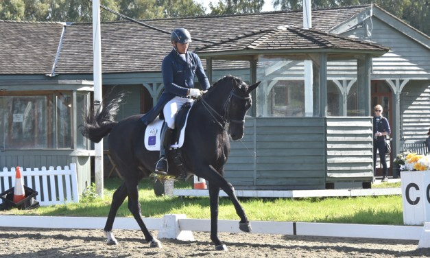 Dressage results: Oldencraig, Surrey, 8 February