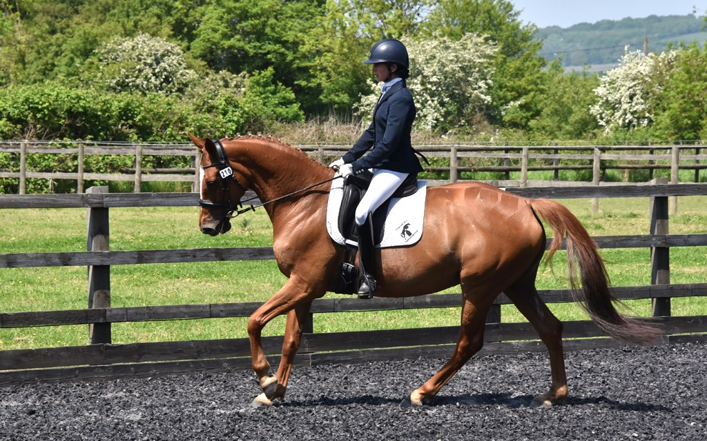 Dressage results: Petley Wood, East Sussex, 28 February