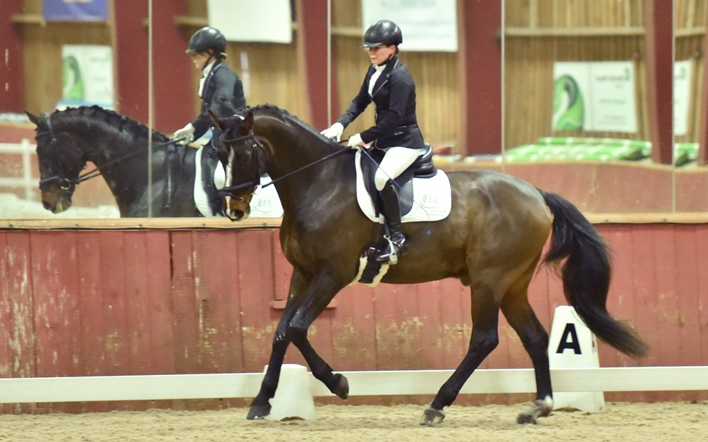 Dressage results: Merrist Wood, Surrey, 9 March