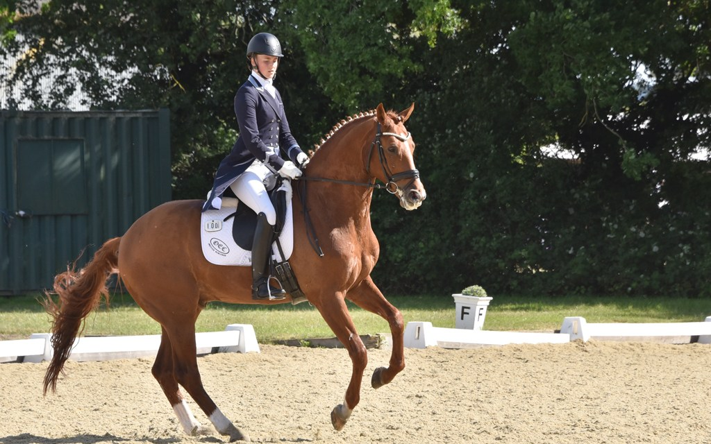 Dressage results: Oldencraig, Surrey, 8 March