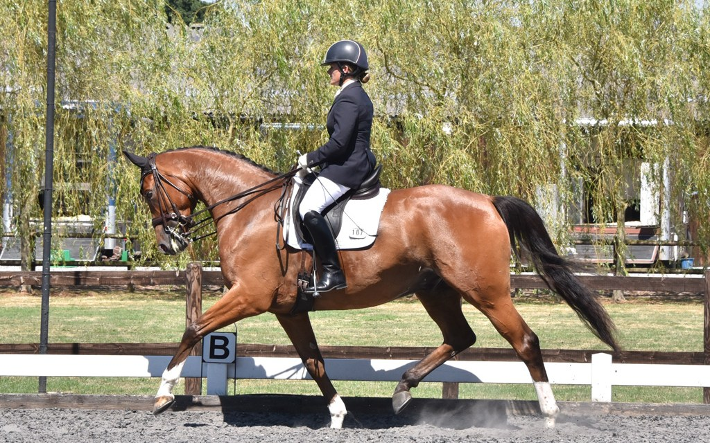 Dressage results: Parwood, Surrey, 11 April 2019