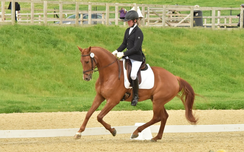 Dressage results: Merrist Wood, Surrey, 14 April 2019