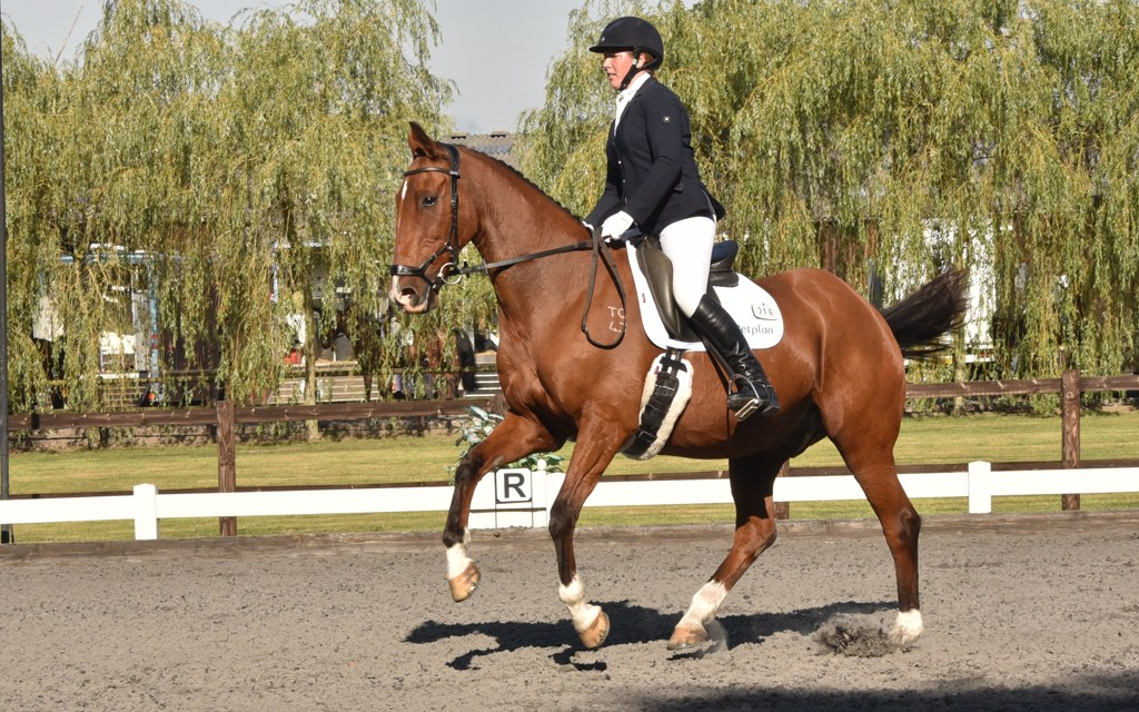 Dressage results: Brendon Stud, West Sussex, 6 April 2019