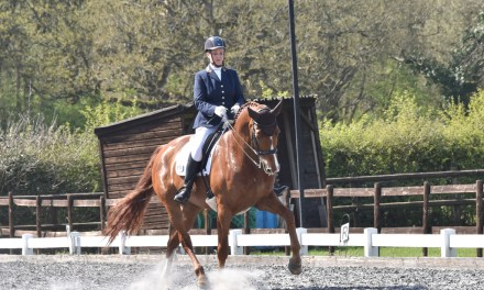 Dressage results: Oldencraig, Surrey, 19 April 2019