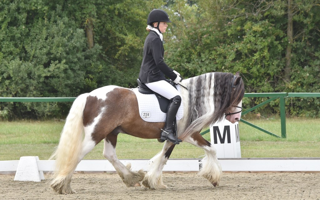 Dressage results: Parwood, Surrey, 28 March 2019