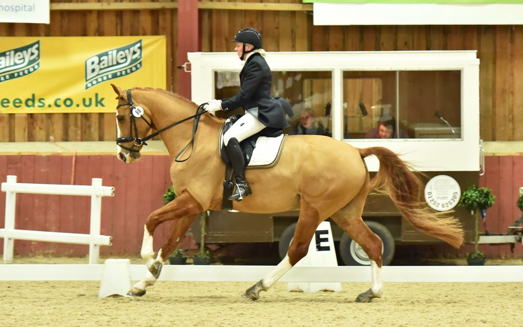 Dressage results: Chester Hall Events (Speedgate) Kent, 18 May 2019