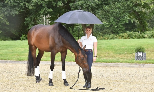 Training the Horse's Mind for Relaxed Performance
