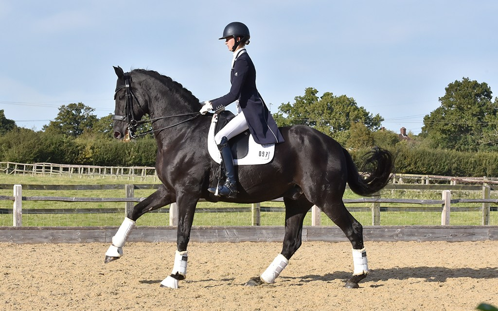 Donny and Rachael reach the top of the dressage mountain