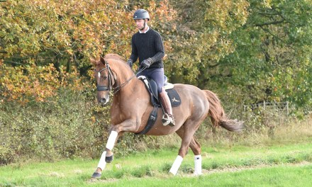 Can you name Kent's homebred international dressage hero?