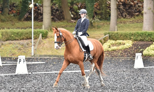 Dressage results: Blue Barn, Kent, 14 March 2020