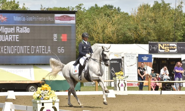 Hickstead plans to lift spirits with some 2020 virtual dressage glamour