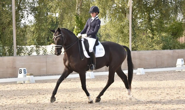 Riders and horses move on and up in their careers