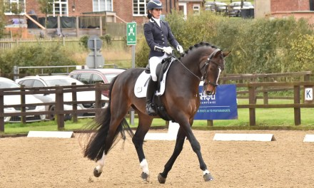 Dressage results: Belmoredean, West Sussex, 4 November 2020