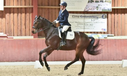 Dressage results: Wellington Riding, Hants, 15 December 2020