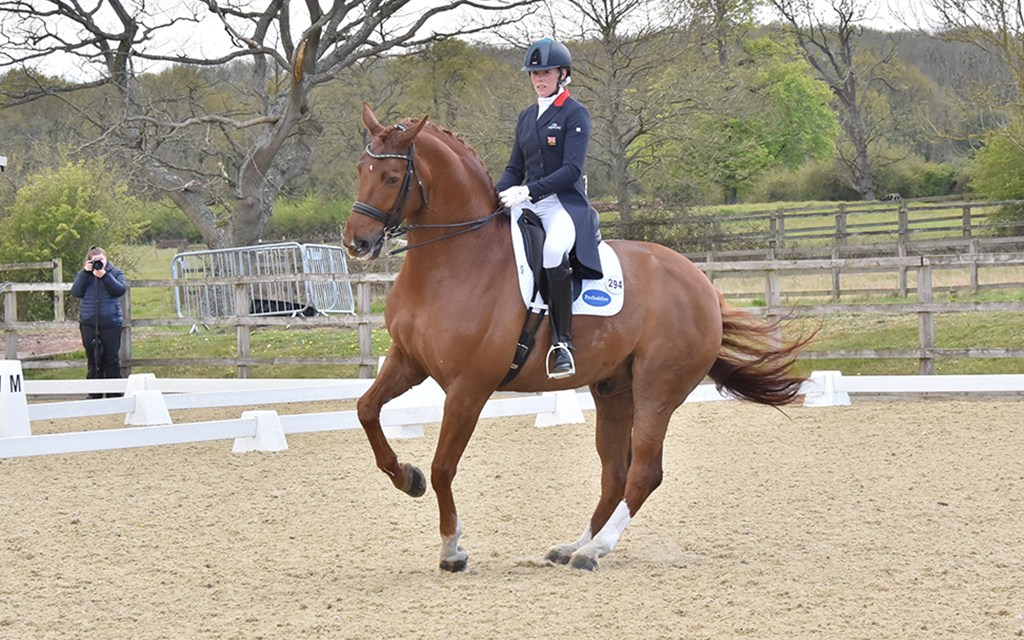 Parwood Area Festival identifies rising stars among riders and horses