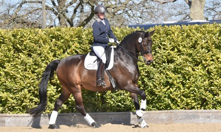 Dressage results: Pachesham, Surrey, 2 May 2021