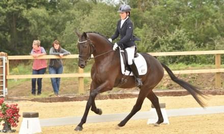 Nexgen young horse contestants dazzle in a perfect setting at Felbridge