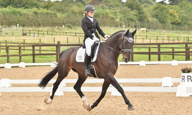 Winners at Dressage Summer Area Festival celebrate in style, part 2