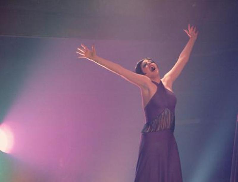 liza-minnelli-in-cabaret-large-picture