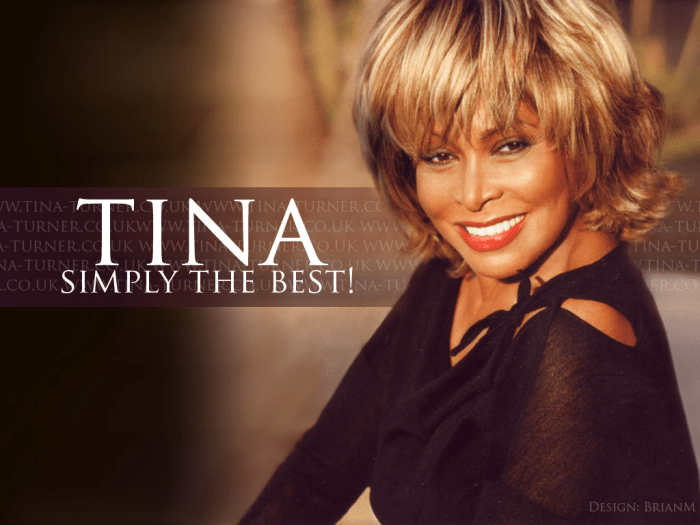 tina-turner-simply-the-best