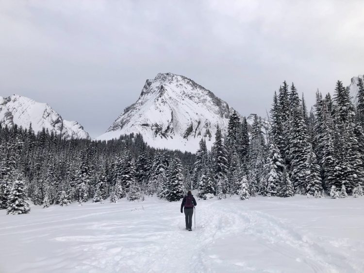 Getting close to Chester Lake on the snow-covered trail