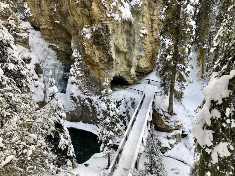 The Lower Falls on the Johnston Canyon trail