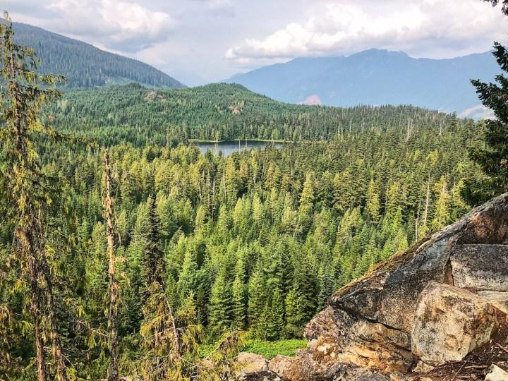Ancient Cedars Trail near Whistler, BC
