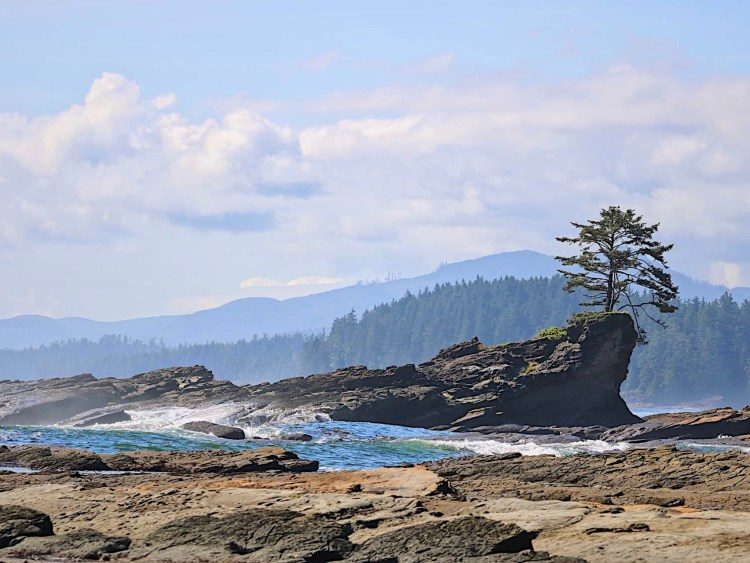 Ocean view while hiking the West Coast Trail