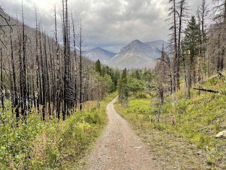 Goat Lake hike trail