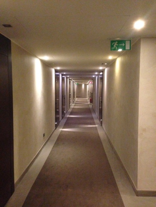 Hallways of the Radisson Blu