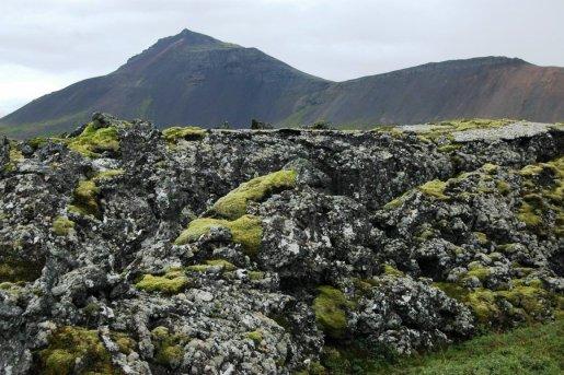 Rocks near Thingvellir