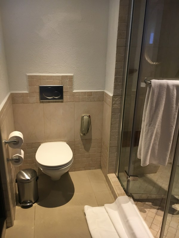 Toilet, next to the shower