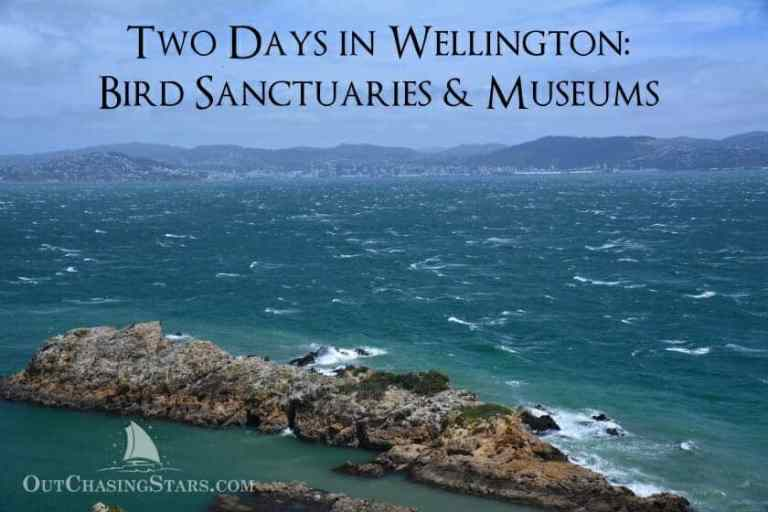 Two Days in Wellington