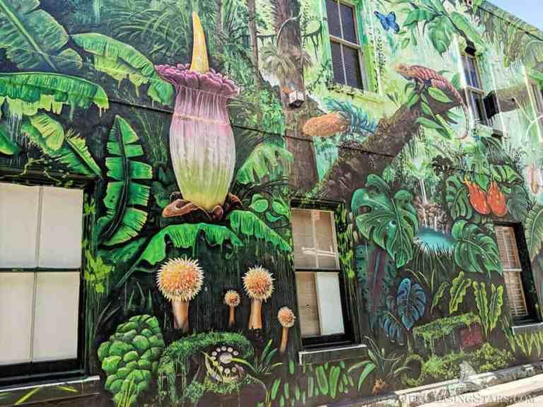 Melbourne Laneways Self-Guided Walking Tour