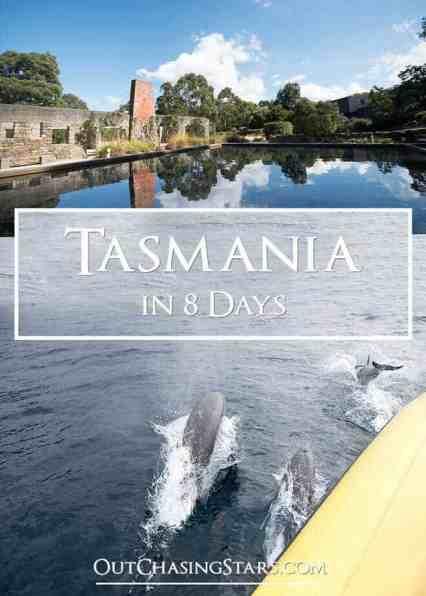 Tasmania in 8 Days Pin