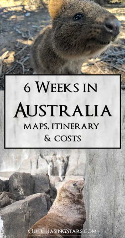6 Weeks in Australia Itinerary Animals Pin