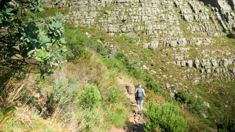 Hiking Table Mountain:  Platteklip Gorge